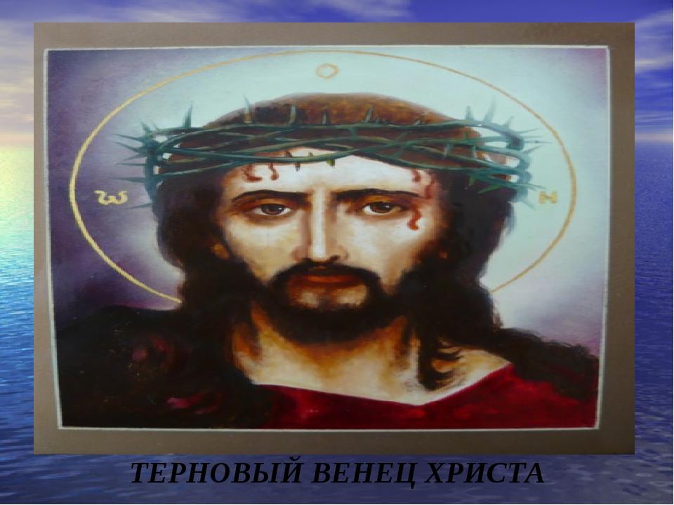 ТЕРНОВЫЙ ВЕНЕЦ ХРИСТА
