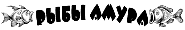 hello_html_41d32021.png
