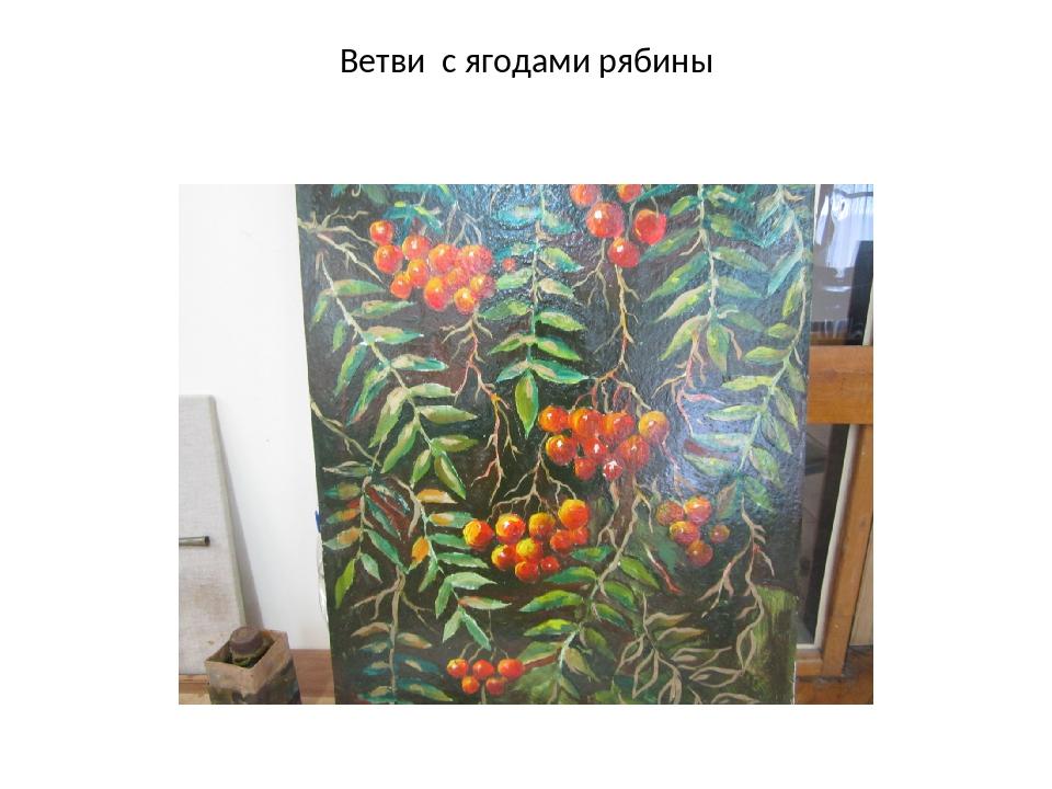 Ветви с ягодами рябины