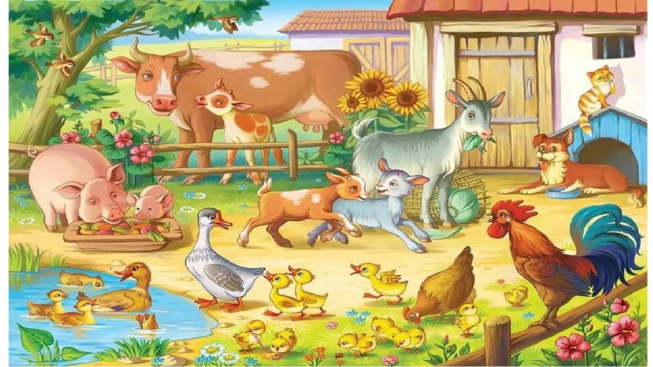 птичий ферма картинки