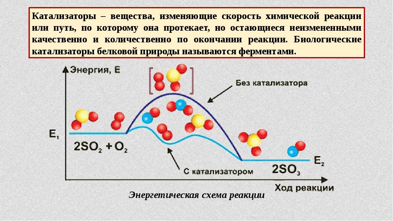 Катализаторы – вещества, изменяющие скорость химической реакции или путь, по...