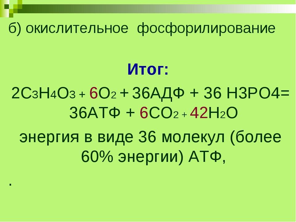 б) окислительное фосфорилирование Итог: 2С3Н4О3 + 6О2 + 36АДФ + 36 Н3РО4= 36А...
