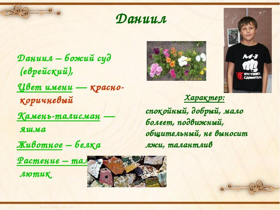 Даниил Даниил – божий суд (еврейский), Цвет имени — красно-коричневый Камень-...