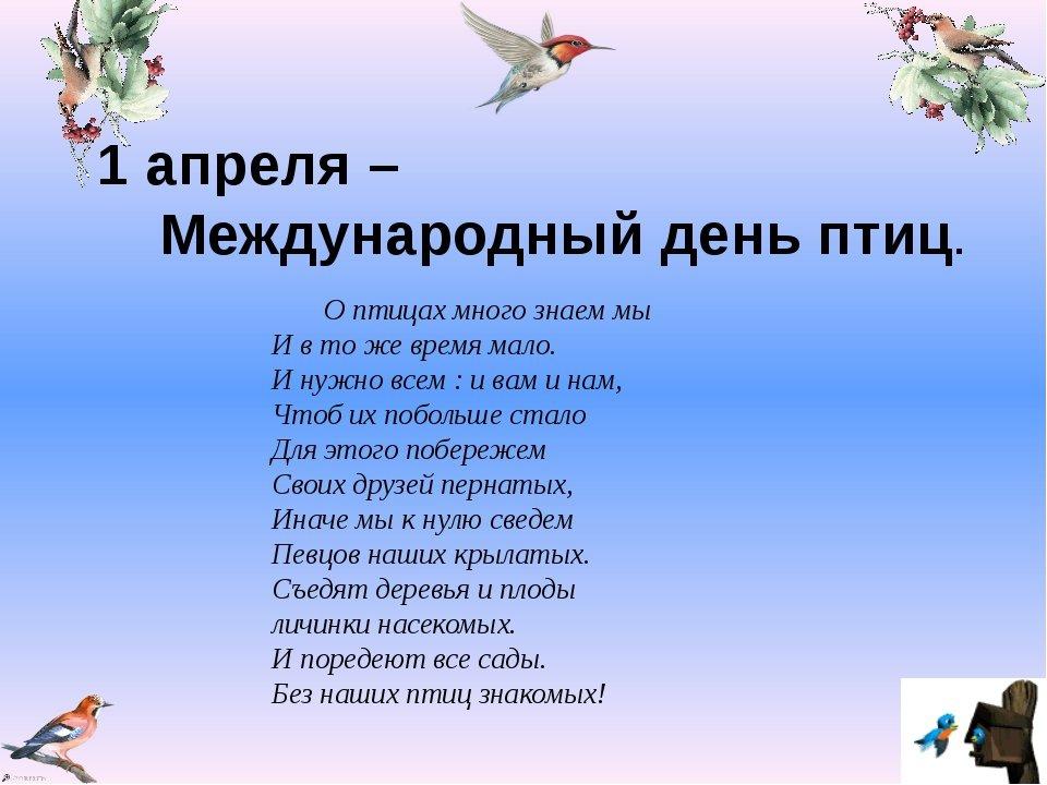 День птиц картинки для детей, открытка
