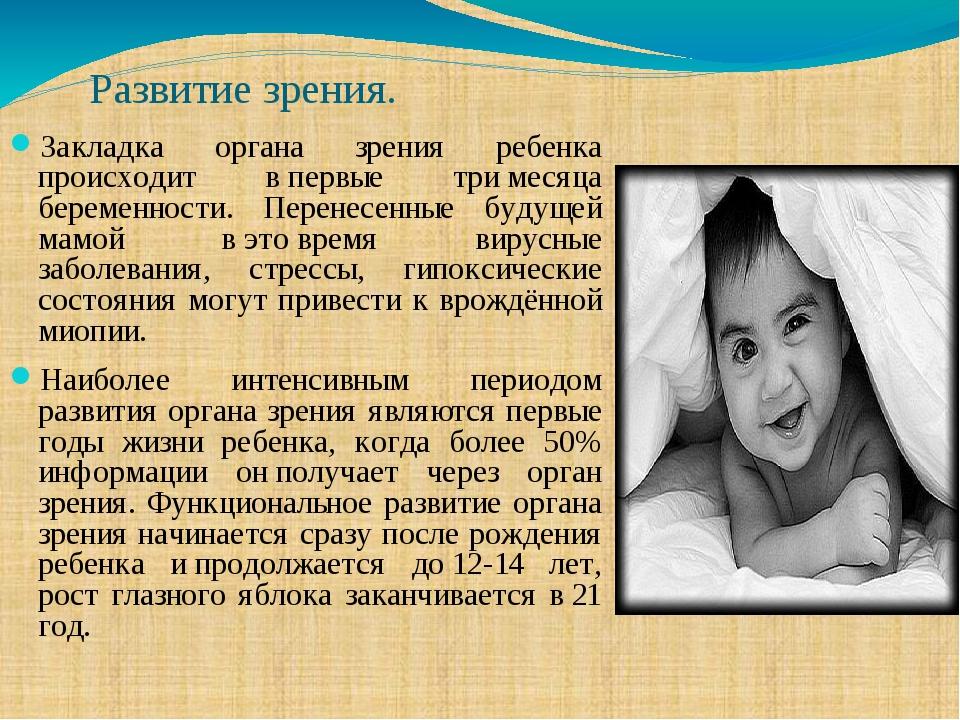 Развитие зрения. Закладка органа зрения ребенка происходит впервые тримесяц...