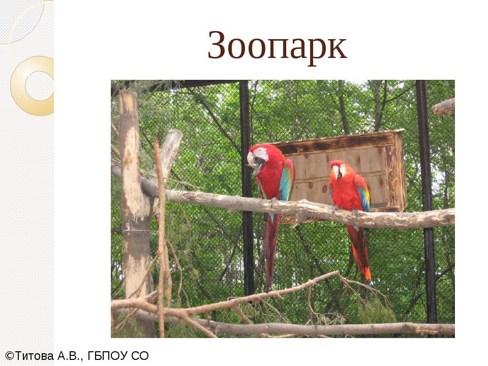 Зоопарк ©Титова А.В., ГБПОУ СО СОПК,2019
