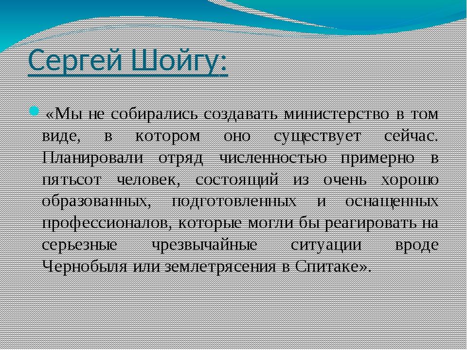 Сергей Шойгу: «Мы не собирались создавать министерство в том виде, в котором...