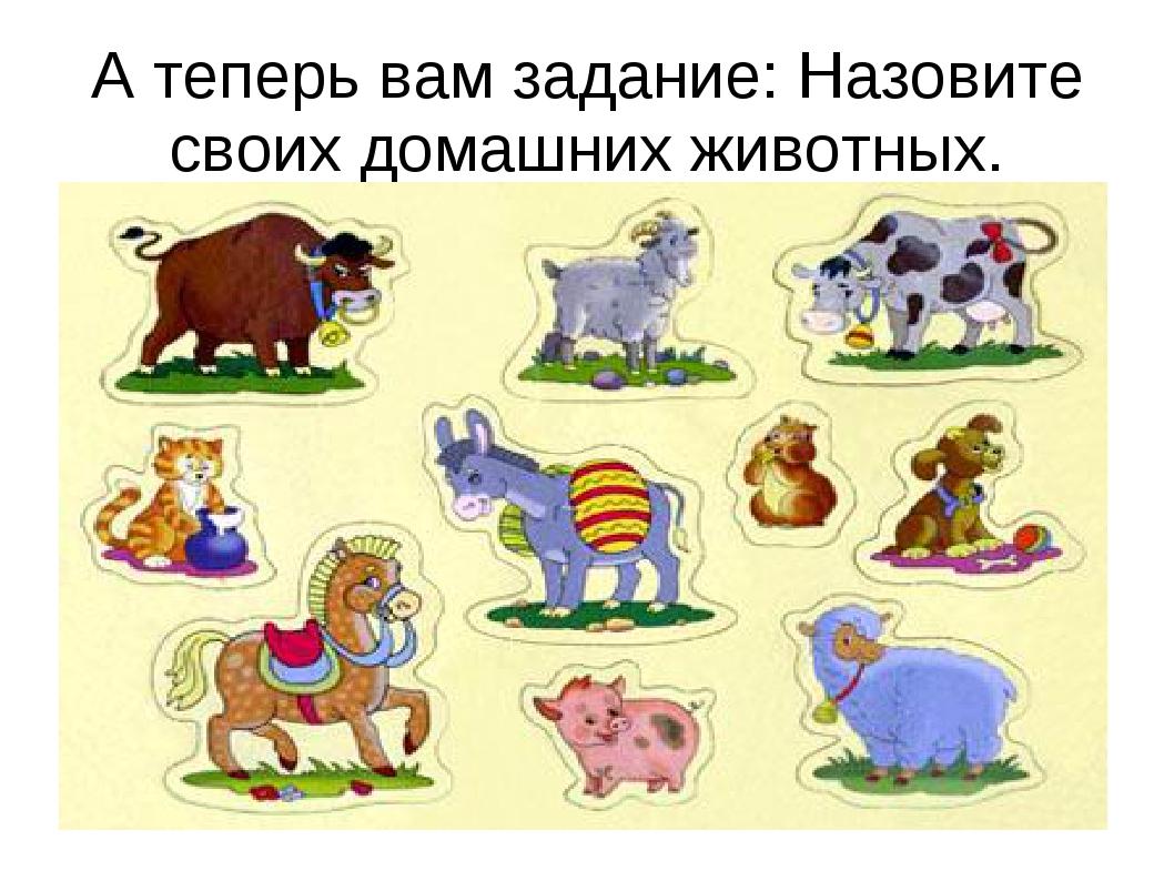 А теперь вам задание: Назовите своих домашних животных.