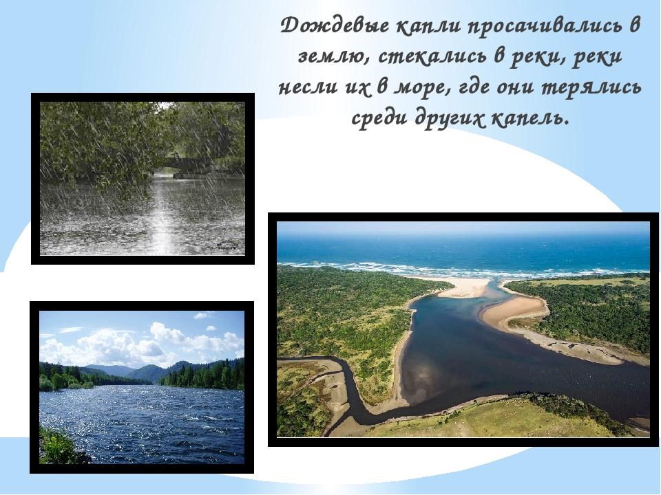 Дождевые капли просачивались в землю, стекались в реки, реки несли их в море,...