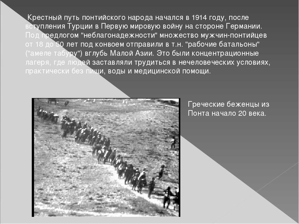 Крестный путь понтийского народа начался в 1914 году, после вступления Турци...