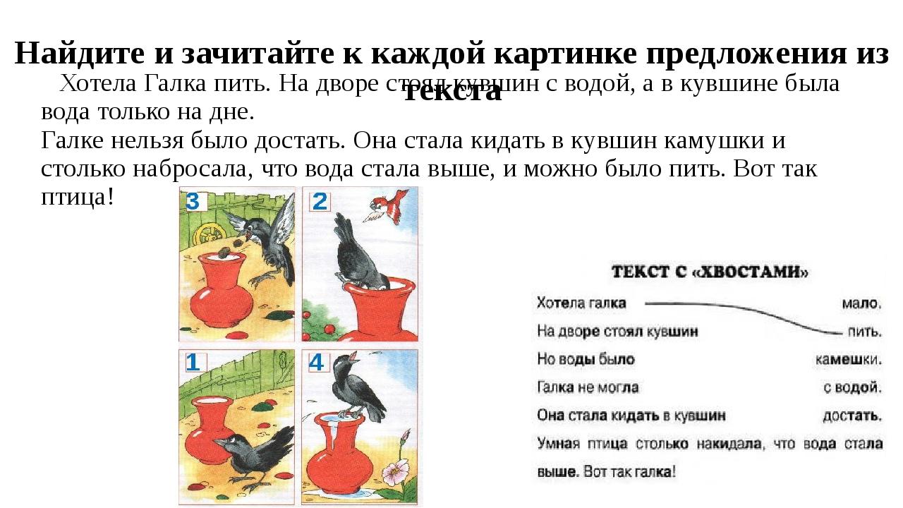 хотела галка пить картинки для пересказа костромыкин российский актер