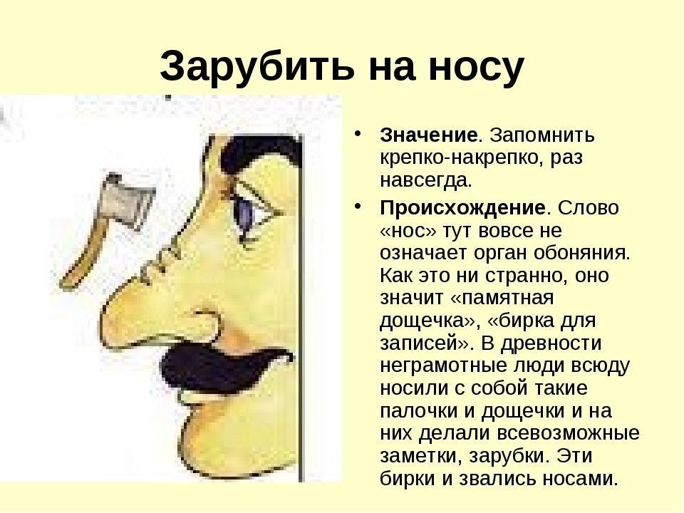 Анекдот Про Нос
