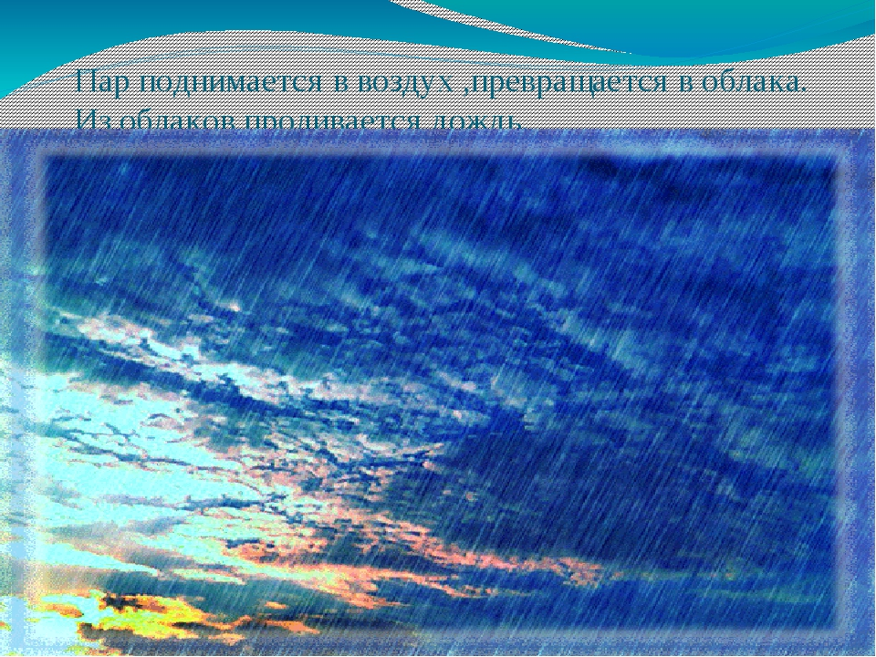 Пар поднимается в воздух ,превращается в облака. Из облаков проливается дождь.