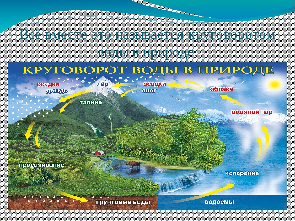 Всё вместе это называется круговоротом воды в природе.