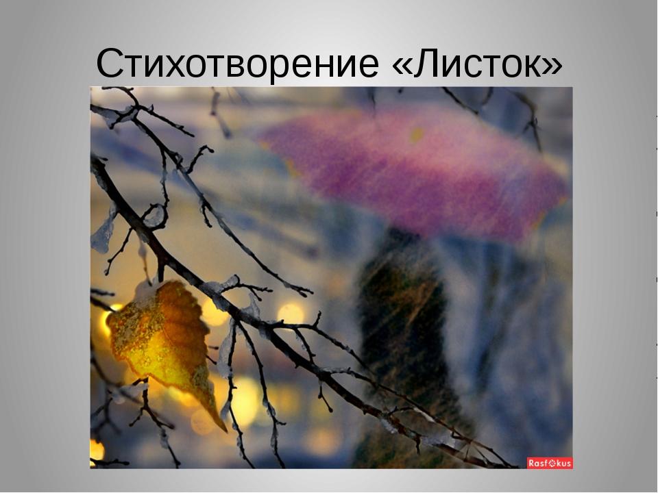 Картинки на стих листья