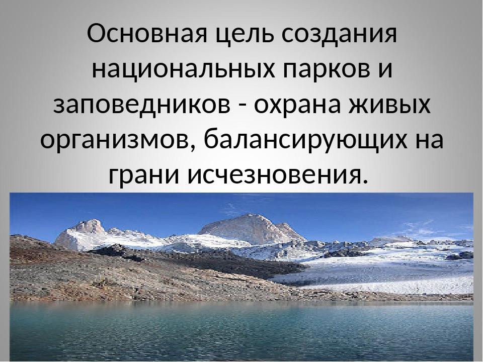 Основная цель создания национальных парков и заповедников - охрана живых орга...