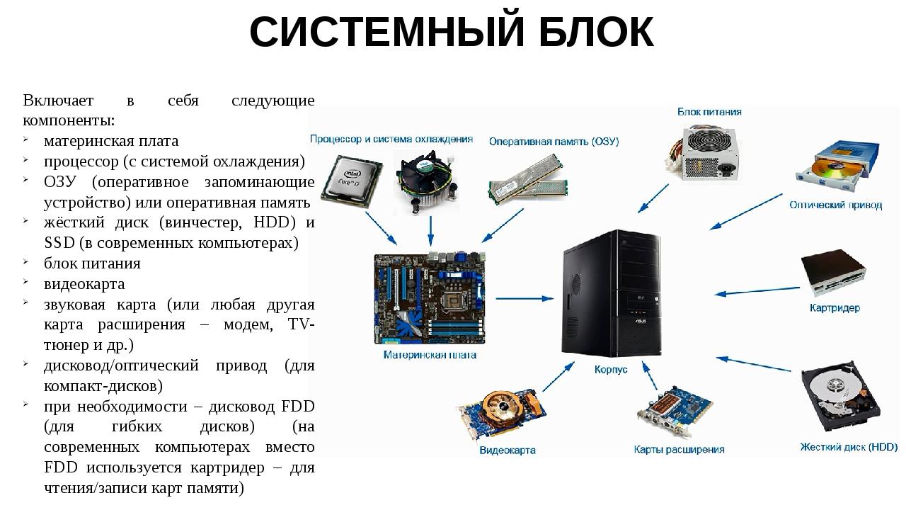 из чего состоит системный блок компьютера картинки ходят школу