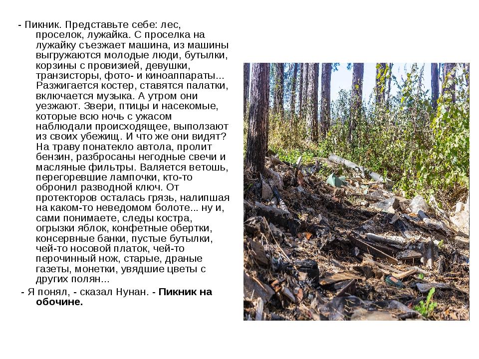 - Пикник. Представьте себе: лес, проселок, лужайка. С проселка на лужайку съе...
