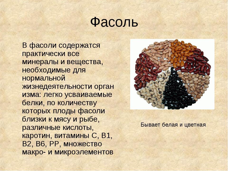 Фасоль В фасоли содержатся практически все минералы и вещества, необходимые...