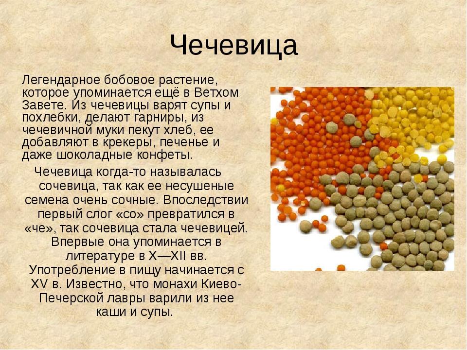 Чечевица Легендарное бобовое растение, которое упоминается ещё в Ветхом Заве...