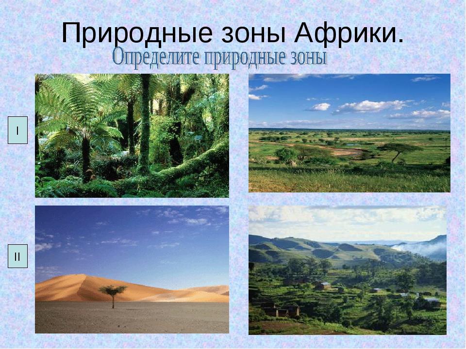 Природные зоны Африки. I II