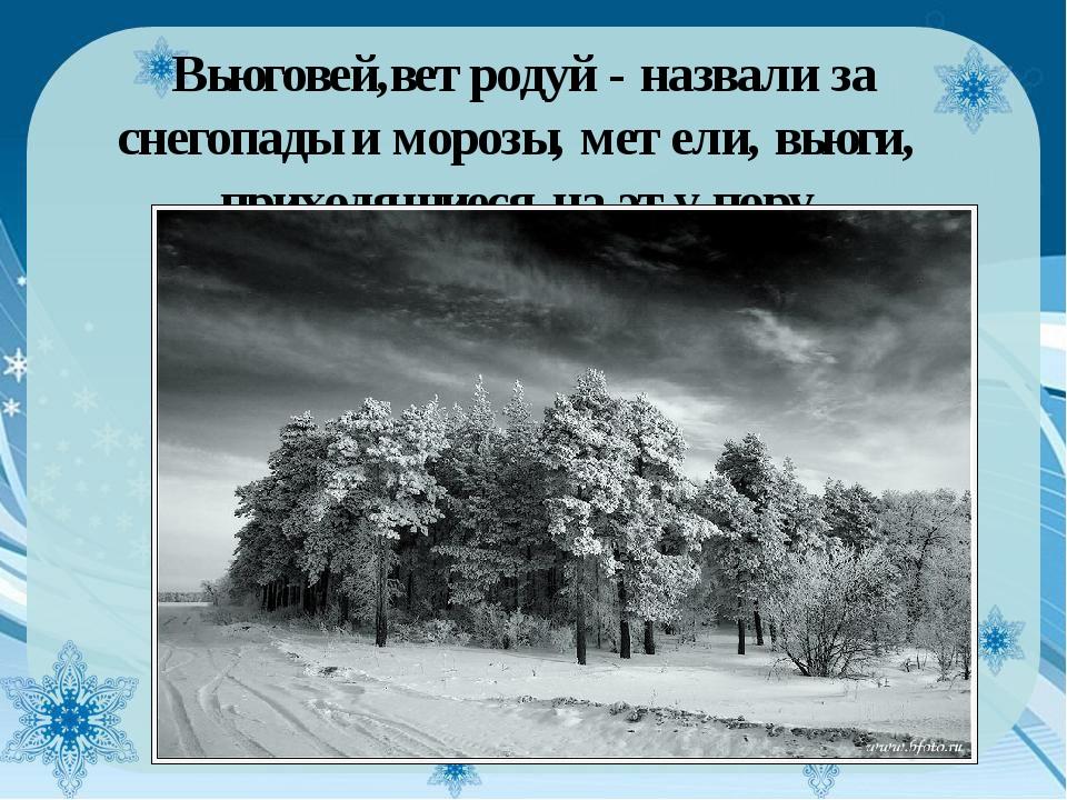 Вьюговей,ветродуй - назвали за снегопады и морозы, метели, вьюги, приходящие...