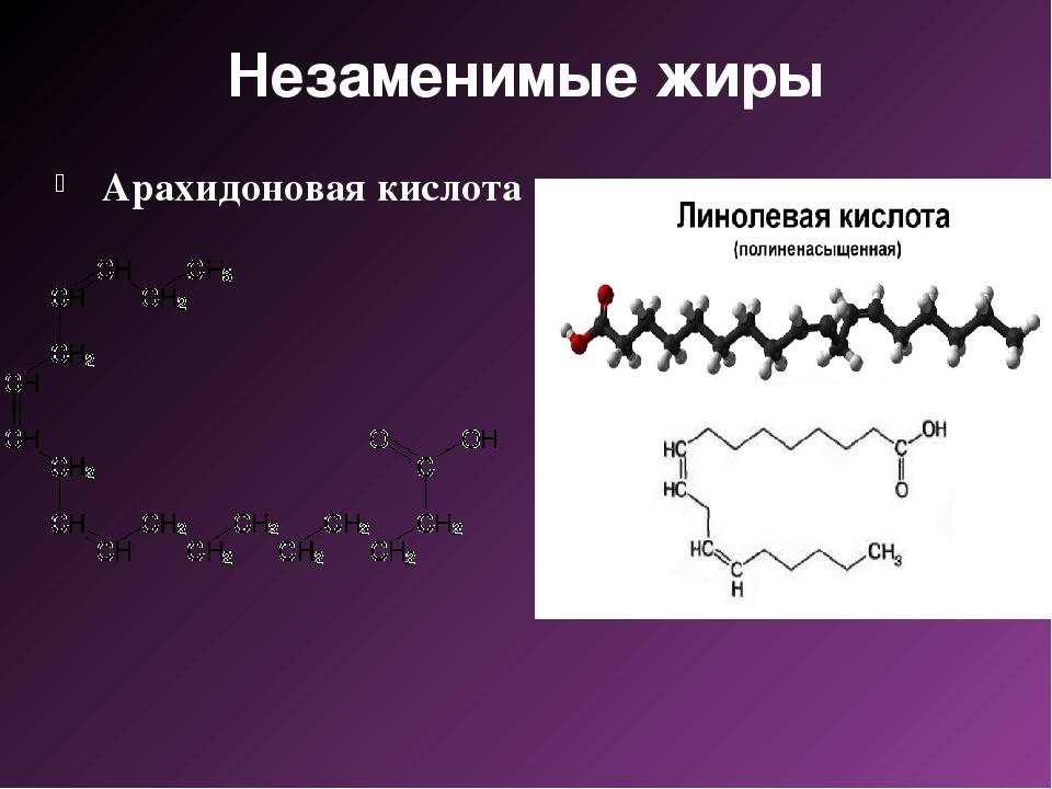 Незаменимые жиры Арахидоновая кислота