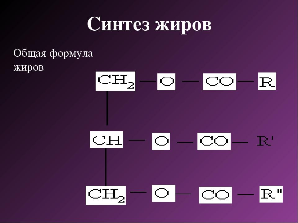 Синтез жиров Общая формула жиров