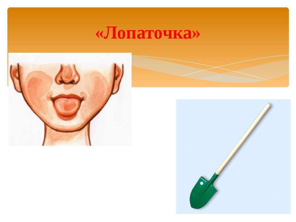 Лопатка упражнение логопеда картинка