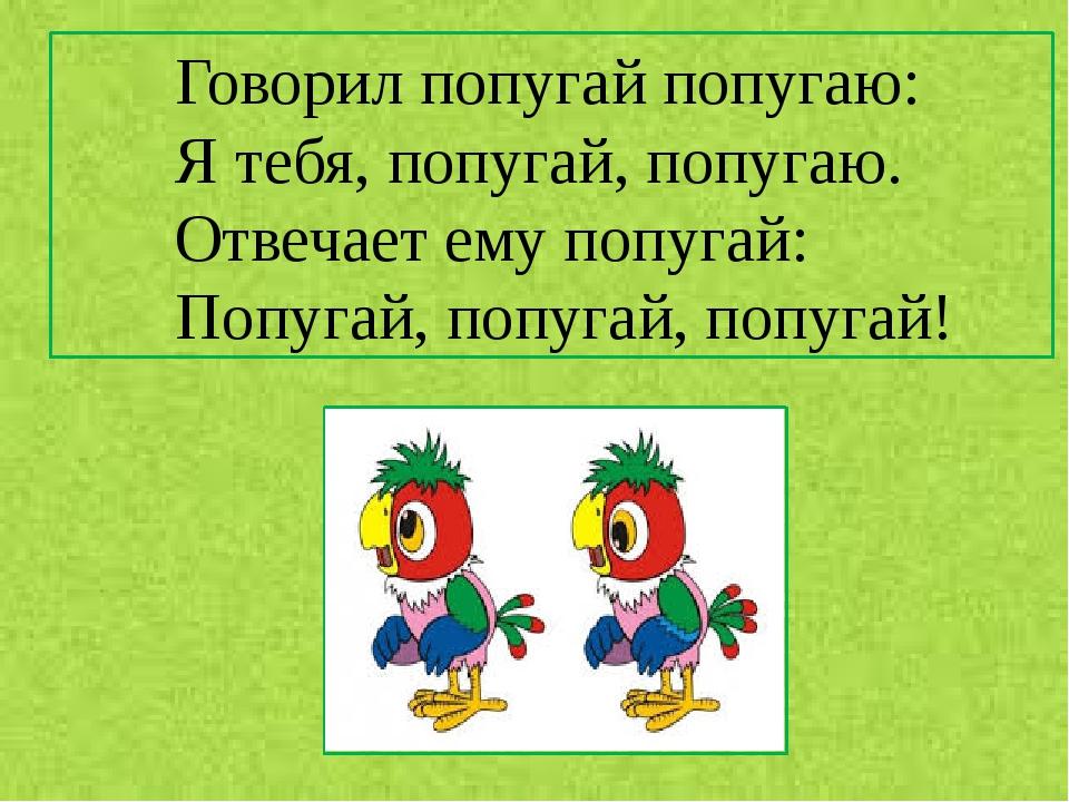 картинки говорит попугай попугаю диалоге нужна фотка