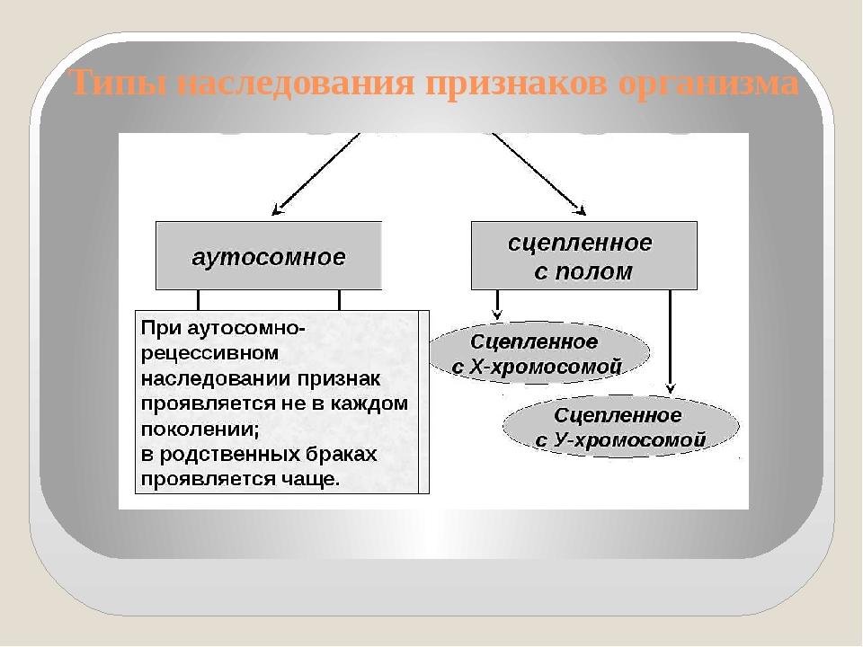 Типы наследования признаков организма