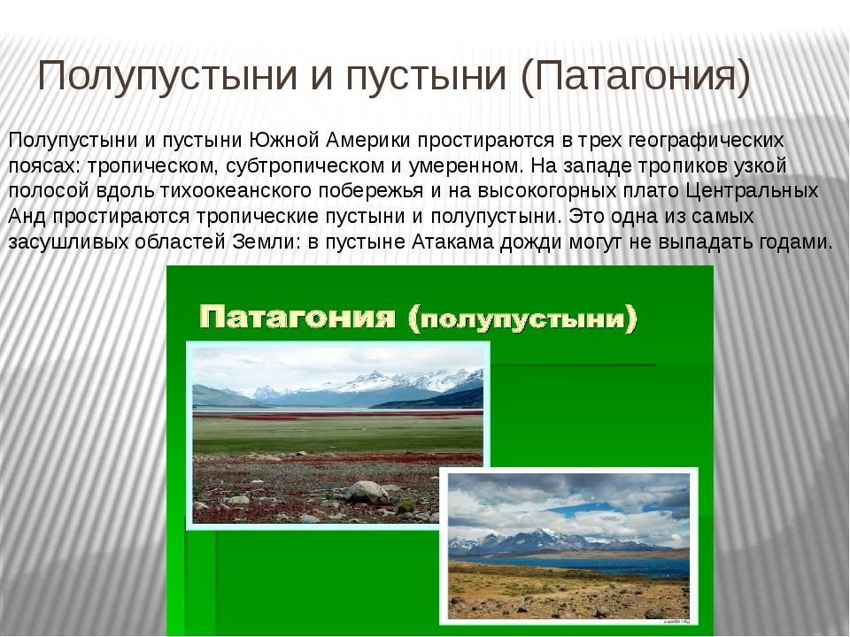 Полупустыни и пустыни (Патагония) Полупустыни и пустыни Южной Америки простир...