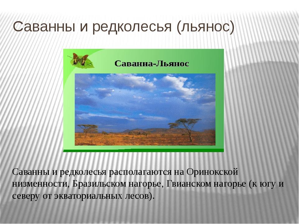 Саванны и редколесья (льянос) Саванны и редколесья располагаются на Оринокско...
