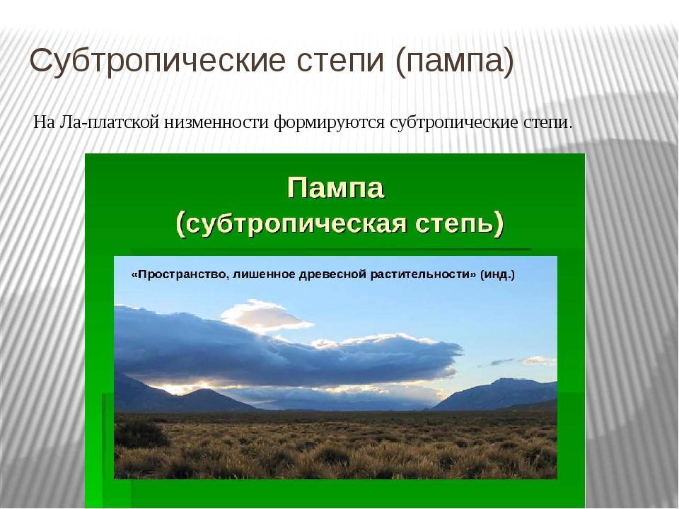 Субтропические степи (пампа) На Ла-платской низменности формируются субтропич...