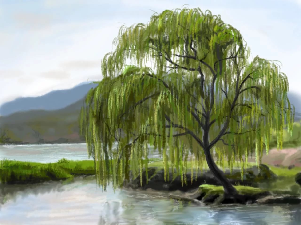 рисунок с деревом и водой территории подобные десантные