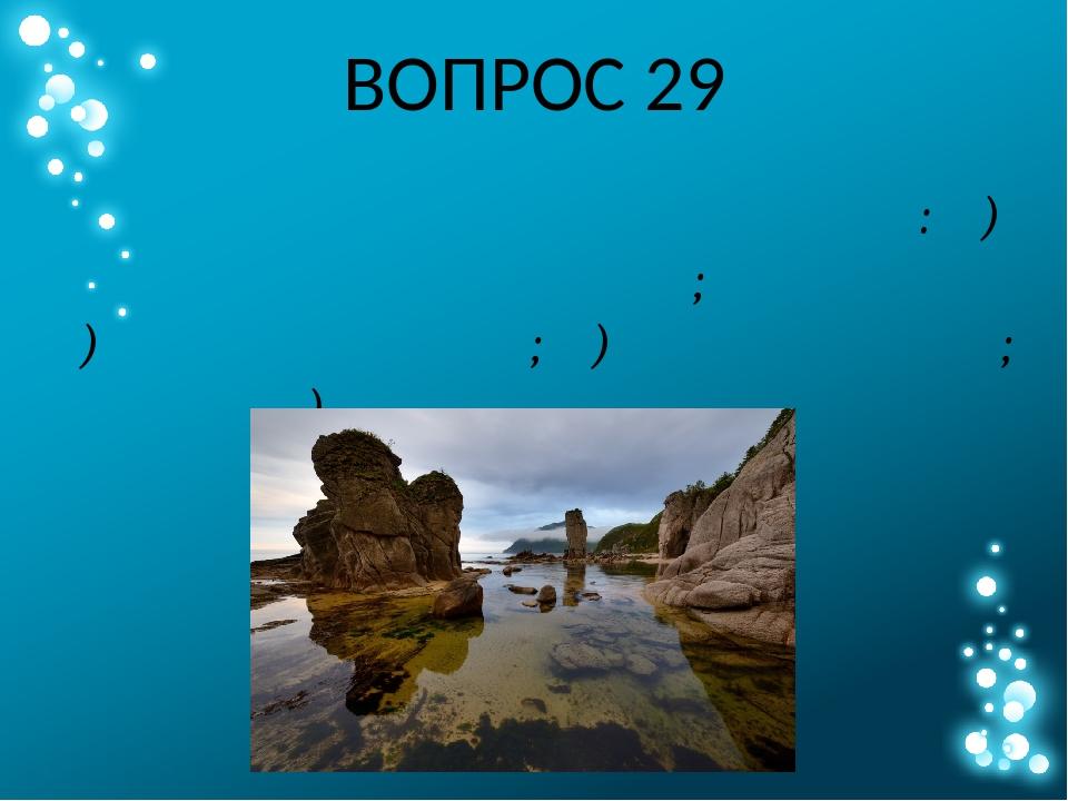 ВОПРОС 29 Выберите из списка объект с наибольшей солёностью воды: А) озеро Ха...