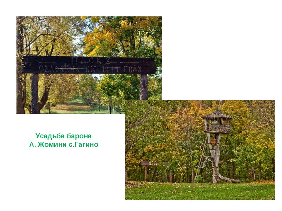 Парк Усадьба барона А. Жомини с.Гагино