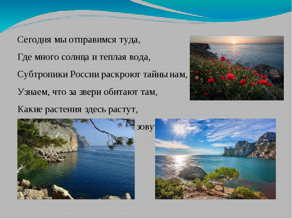 Сегодня мы отправимся туда, Где много солнца и теплая вода, Субтропики России...