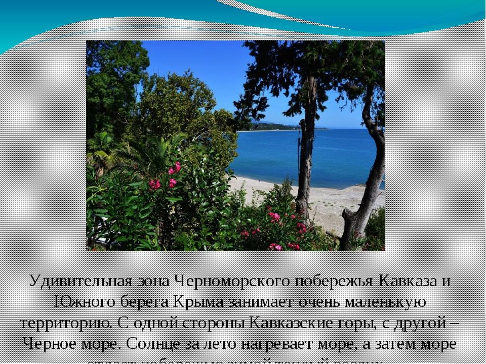 Удивительная зона Черноморского побережья Кавказа и Южного берега Крыма заним...