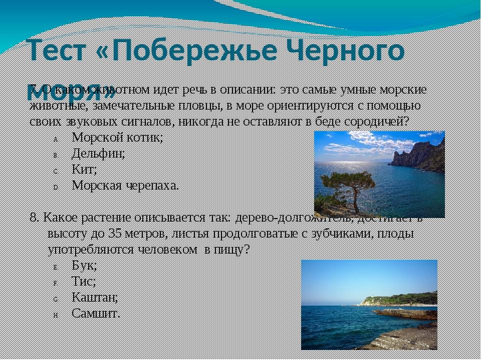 Тест «Побережье Черного моря» 7. О каком животном идет речь в описании: это с...