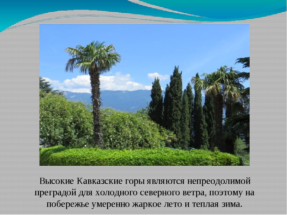 Высокие Кавказские горы являются непреодолимой преградой для холодного северн...