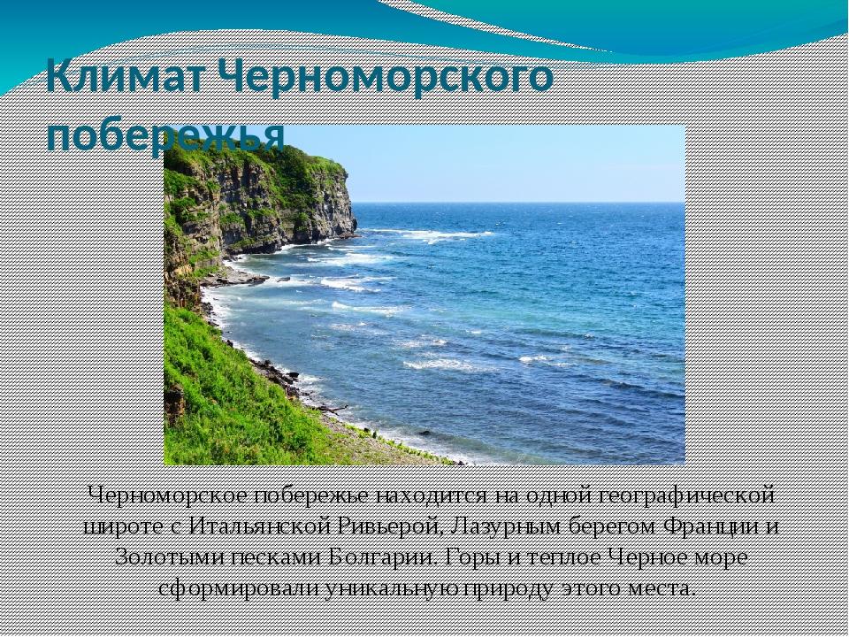 Черноморское побережье находится на одной географической широте с Итальянской...