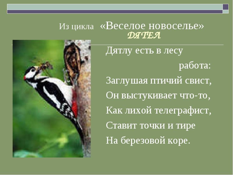 Из цикла «Веселое новоселье» ДЯТЕЛ Дятлу есть в лесу работа: Заглушая птичий...