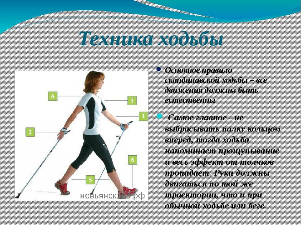 методика скандинавской ходьбы в картинках санки предназначены для