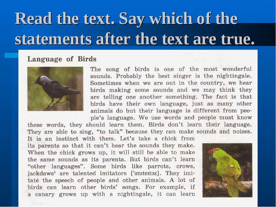 Read the text. Say which of the statements after the text are true.