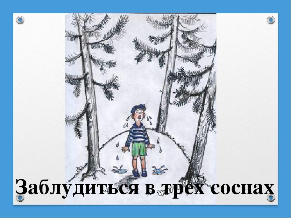 Картинка к пословице заблудиться в трех соснах