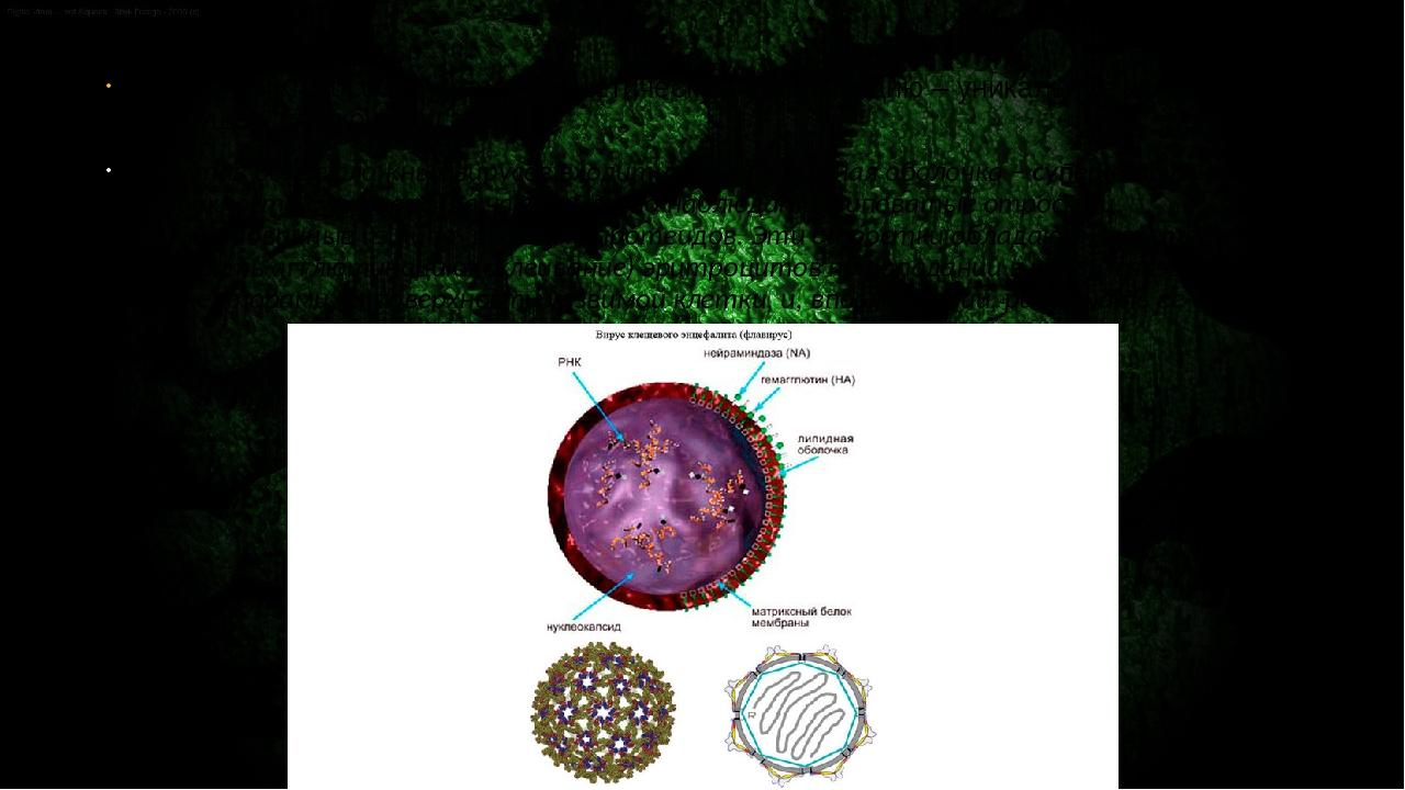 То, что РНК способна хранить генетическую информацию – уникальное свойство,...