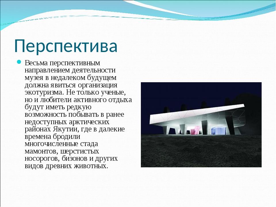 Перспектива Весьма перспективным направлением деятельности музея в недалеком...