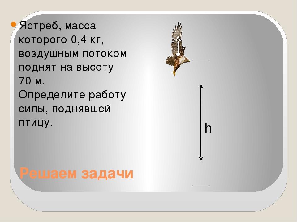 Решаем задачи Ястреб, масса которого 0,4 кг, воздушным потоком поднят на высо...
