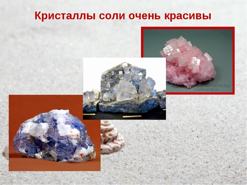 Кристаллы соли очень красивы